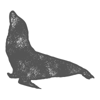 Essipit - Mammifère marin