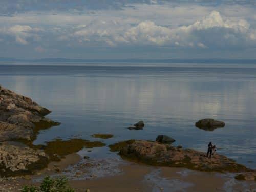 Essipit - Vue chalets de l'Anse-à-Jos